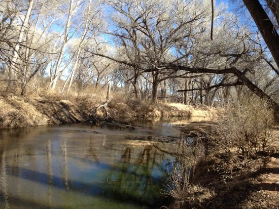 Two mile nature trail weaves along San Pedro River