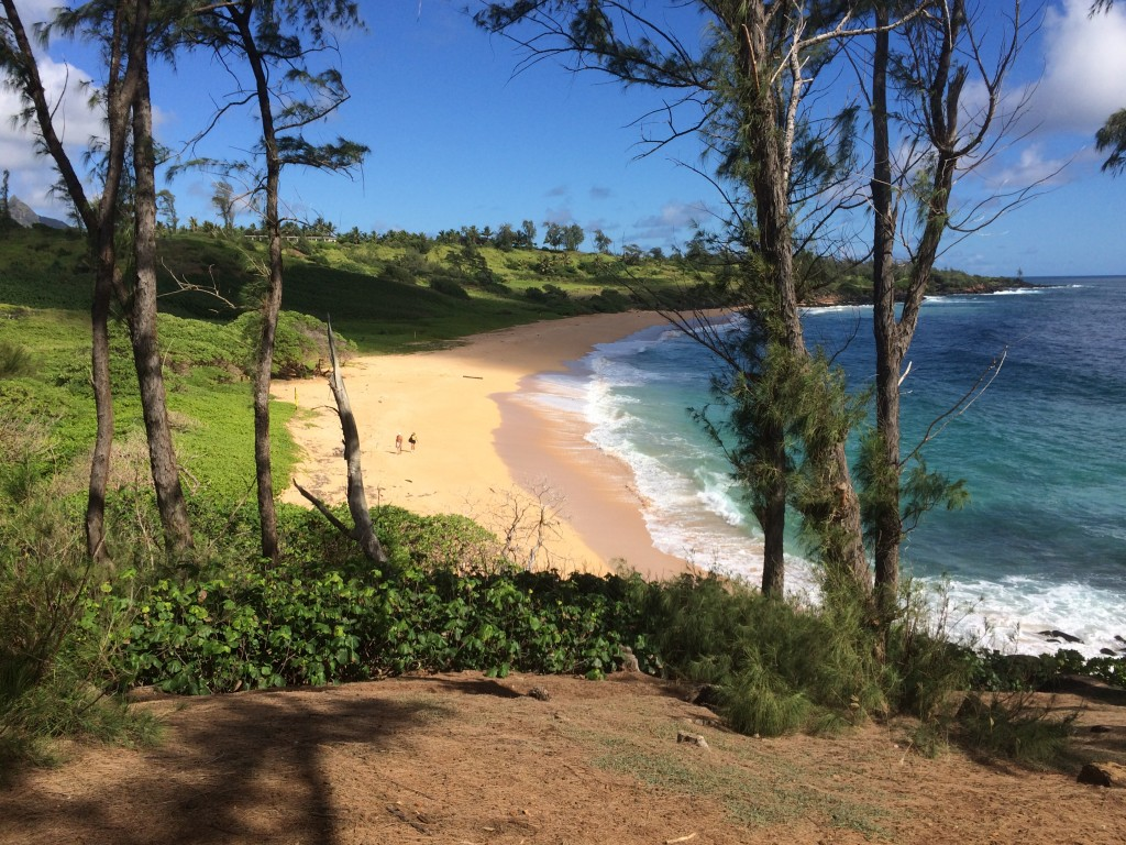 Donkey Beach is an easy walk or bike ride from Kealia along the Kauai Multiuse Path